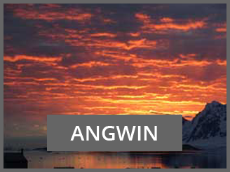 ANGWIN Project Sunset