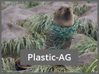 Plastic Project seal in net