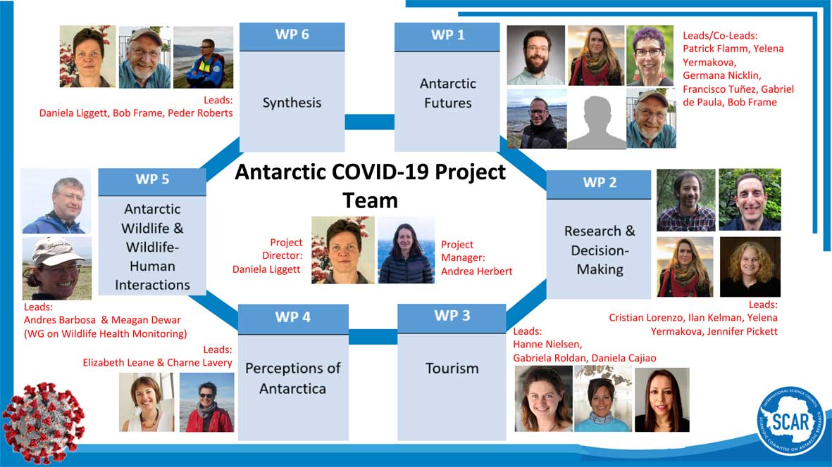COVID 19 Project Infographic web