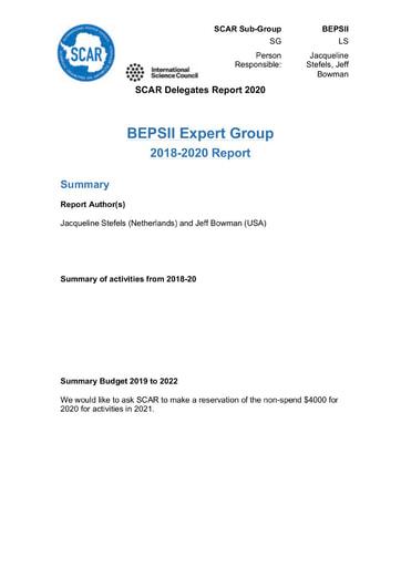 BEPSII Expert Group Report 2020