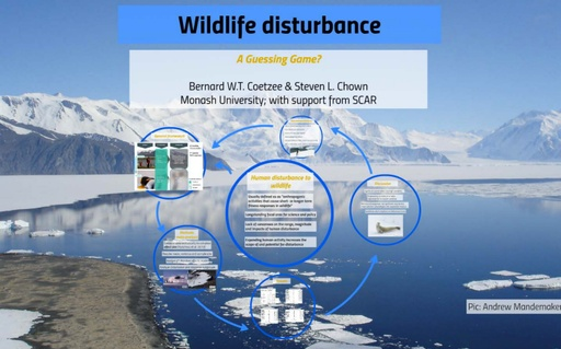 Wildlife Disturbance: A Guessing Game? - Bernard Coetzee
