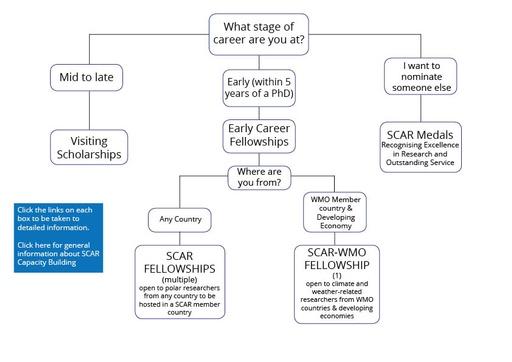 SCAR Fellowships and Awards Flowchart